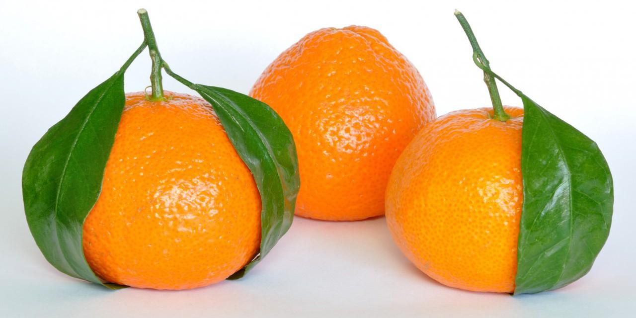 bucce d'arancia per purificare l'acqua