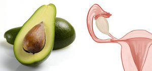 l'avocado fa bene all'utero