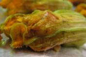 ricetta fiori di zucca ripieni con speck e mozzarella nonsoloricette